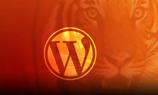 Become a WordPress Developer